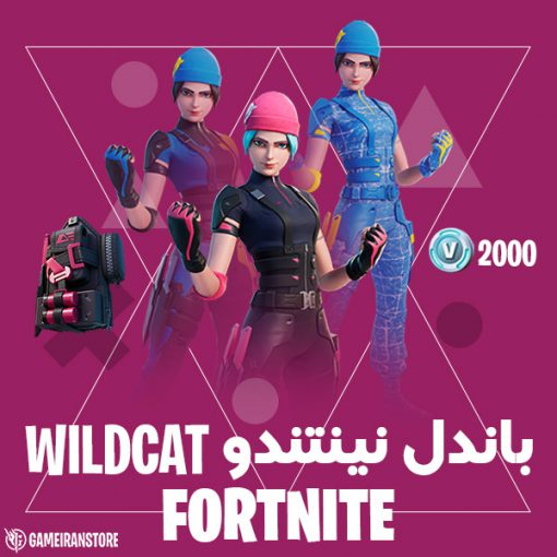 خرید باندل نینتندو wildcat
